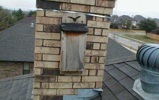 bat house on chimney